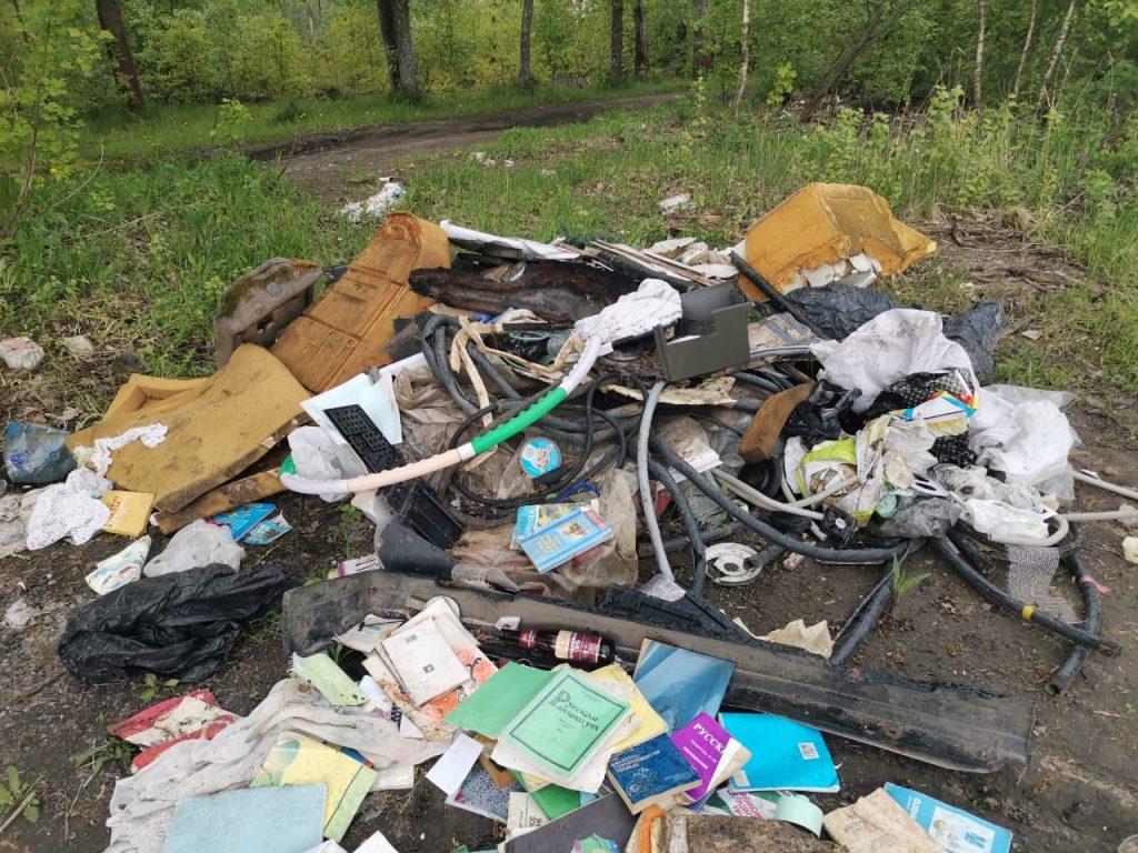 Девять свалок рядом созером умикрорайона Бурнаковский внесены вплан ликвидации