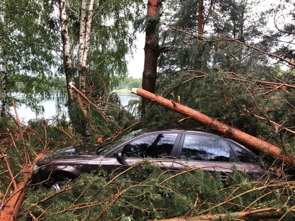 Фото дня: ураган повалил деревья на палатки и машины в Богородском районе