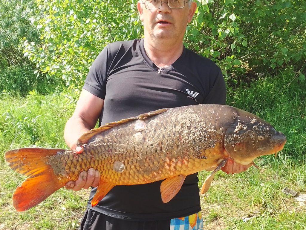 Фото дня: нижегородец поймал 7-килограммовую рыбу