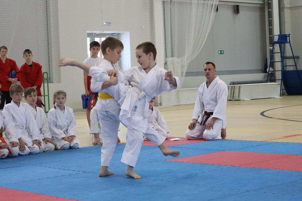 Глеб Никитин: «Спортивные школы начинают работу вНижегородской области»