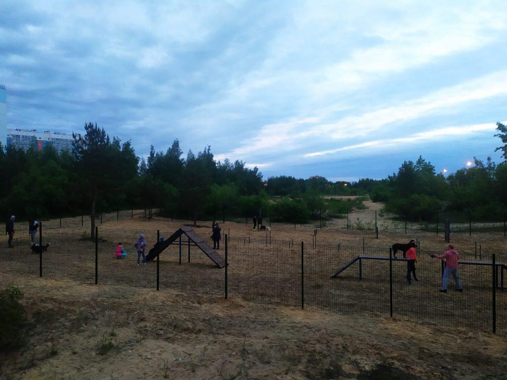 Современную площадку для выгула собак построили в Сормовском районе
