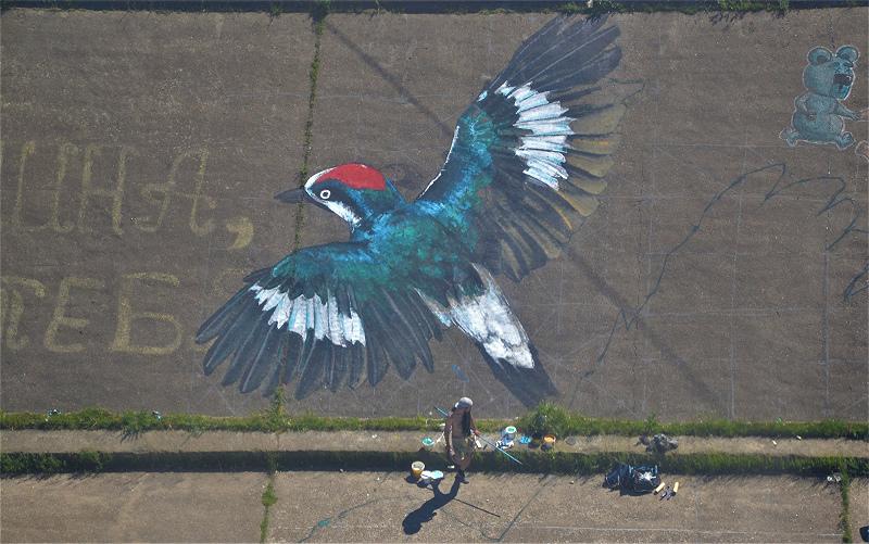 Фото дня: Нижегородские студенты создали стрит-арт на Гребном канале