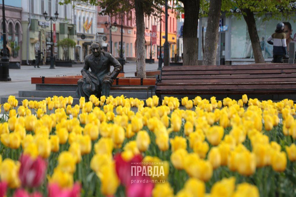 Долгожданное лето придёт в Нижегородскую область
