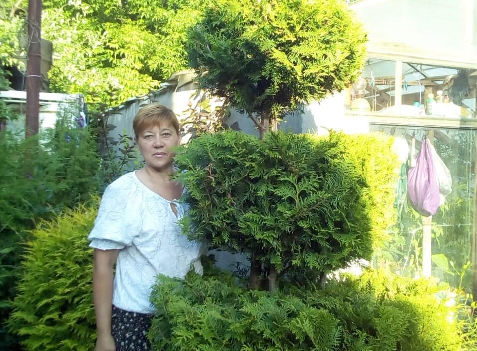 Садовод из Заволжья поделилась секретами выращивания хвойных деревьев