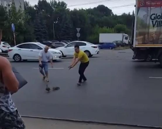 Вежливые дальнобойщики остановили движение на Новикова-Прибоя, чтобы пропустить маму с утятами