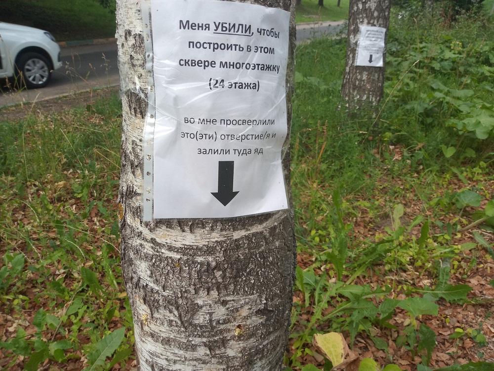 Странные отверстия в деревьях обнаружили нижегородцы в сквере студенческих отрядов на проспекте Гагарина