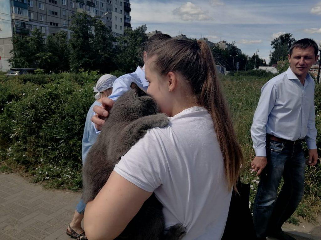 Кота спасли от гибели после взрыва в доме на Краснодонцев