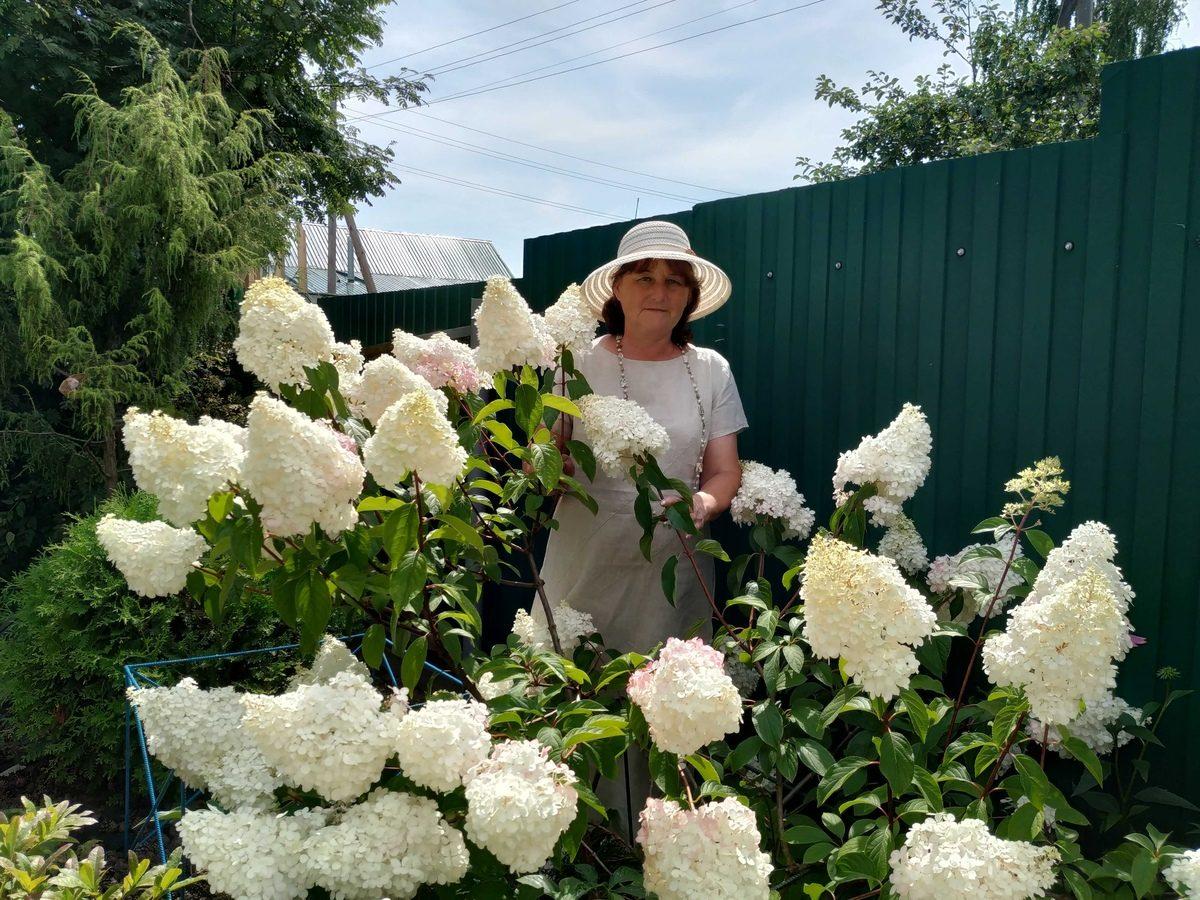 Татьяна Буланова из Дальнего Константинова вырастила на своём участке более 200 видов цветов