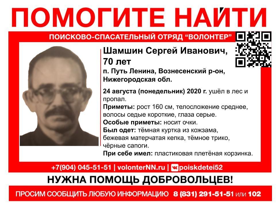 70-летний Сергей Шамшин пропал в лесу: волонтеры призывают нижегородцев присоединиться к поискам