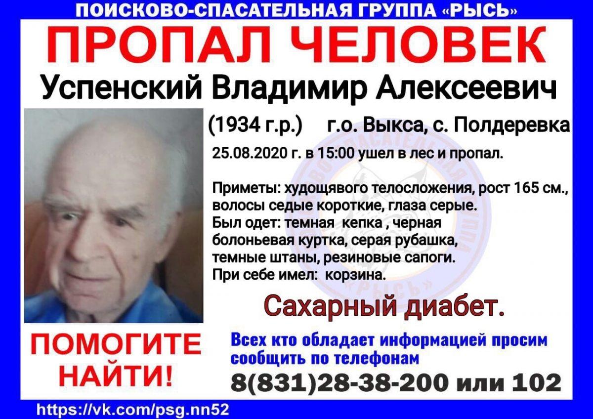 86-летний грибник пропал в Выксунском районе