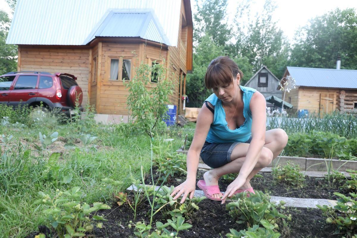 Шашлыки, рассада и медитация: нижегородцы рассказали, чем будут заниматься в майские выходные