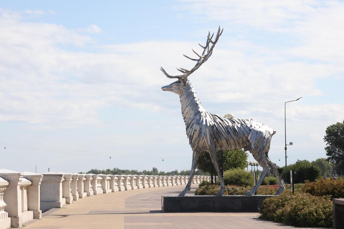 Теплая и сухая погода ожидает нижегородцев в ближайшие выходные