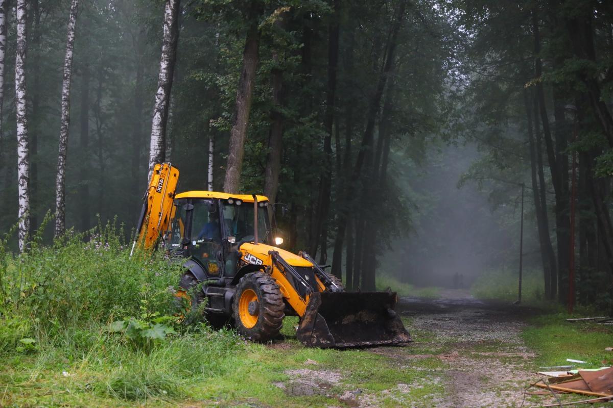 Ремонт теплотрассы угрожает деревьям в нижегородском парке имени Пушкина