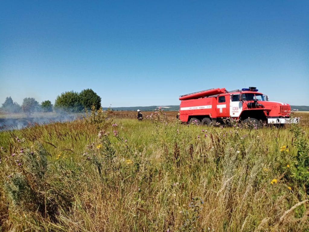 Огромное поле пшеницы сгорело в Гагинском районе