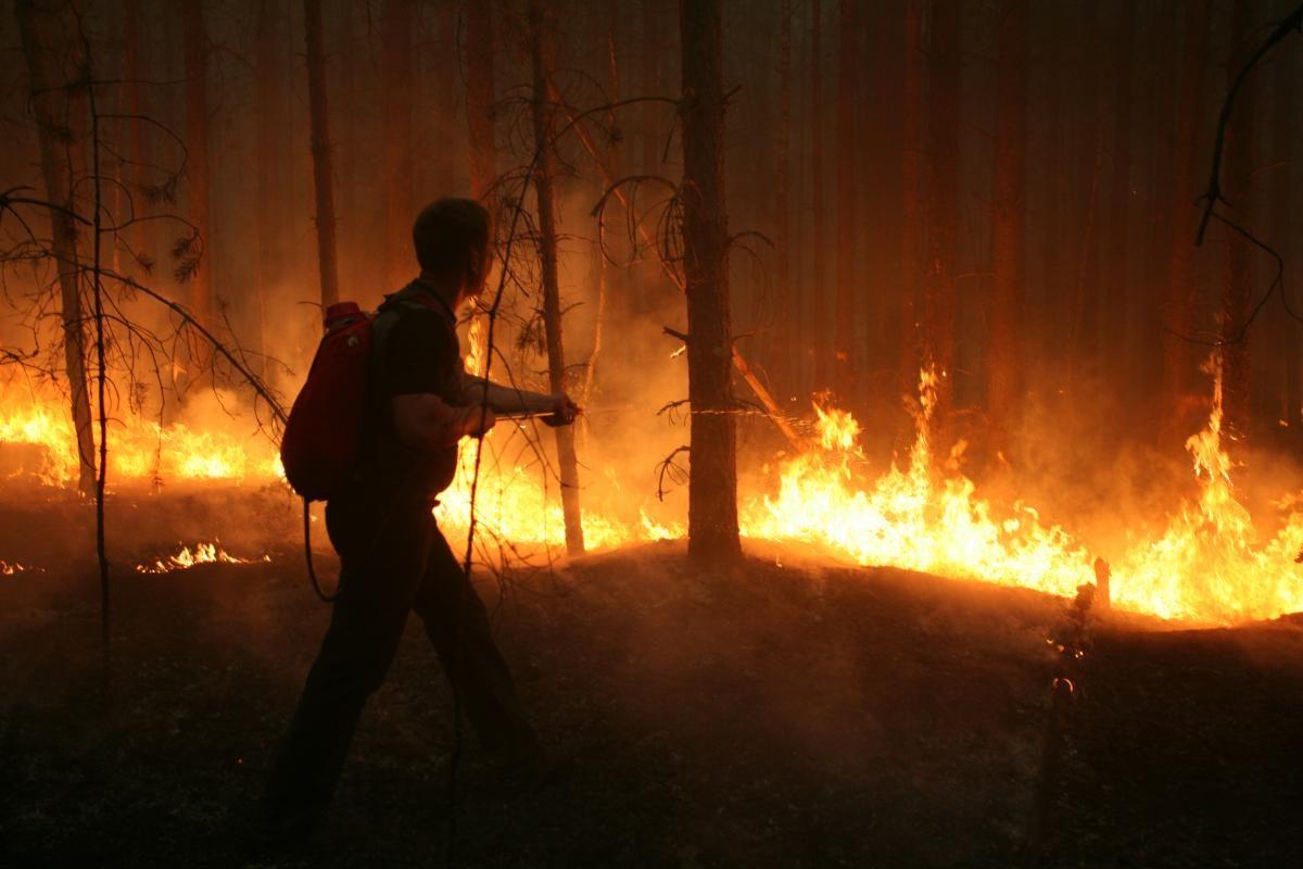 В Нижегородской области сохраняется высокая пожароопасность лесов и торфяников