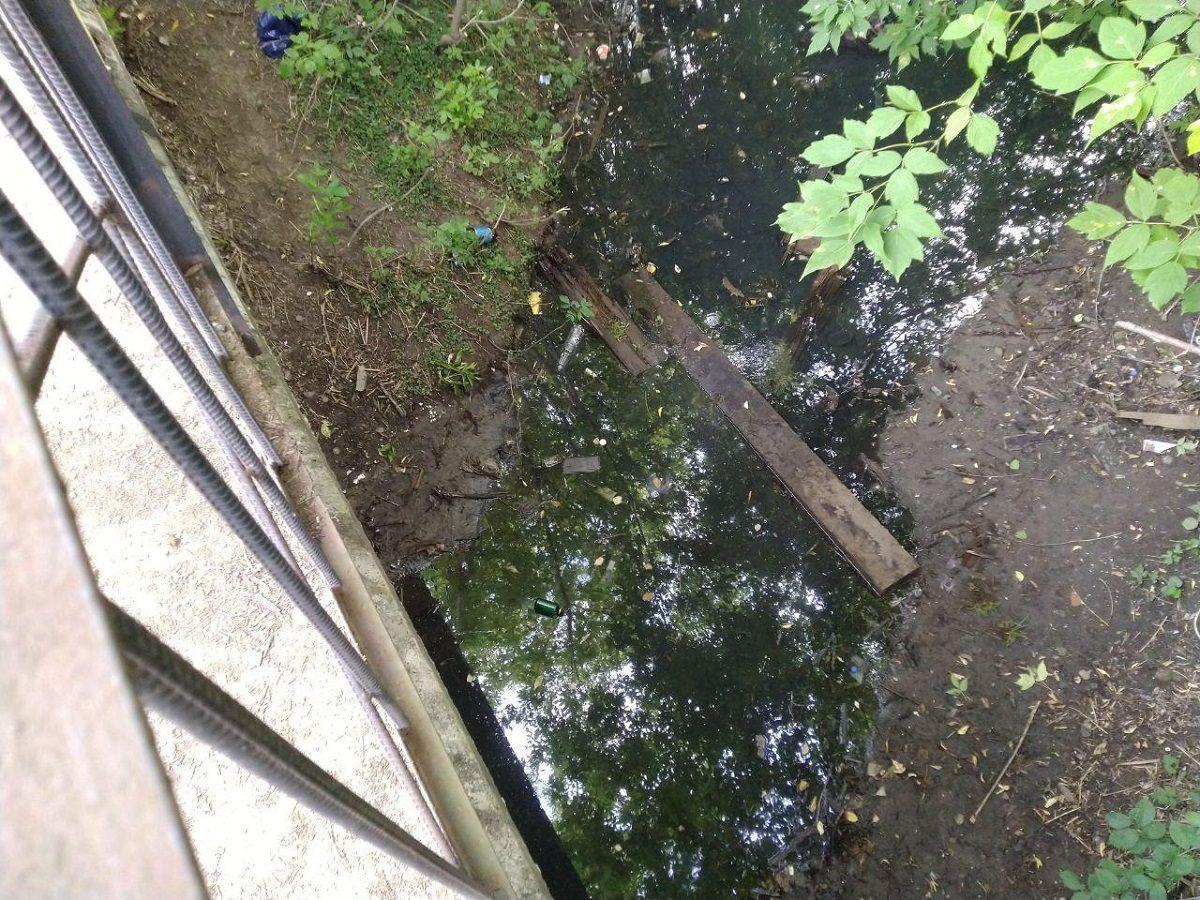 Выбросивших шпалы в реку Борзовка ждет административное наказание