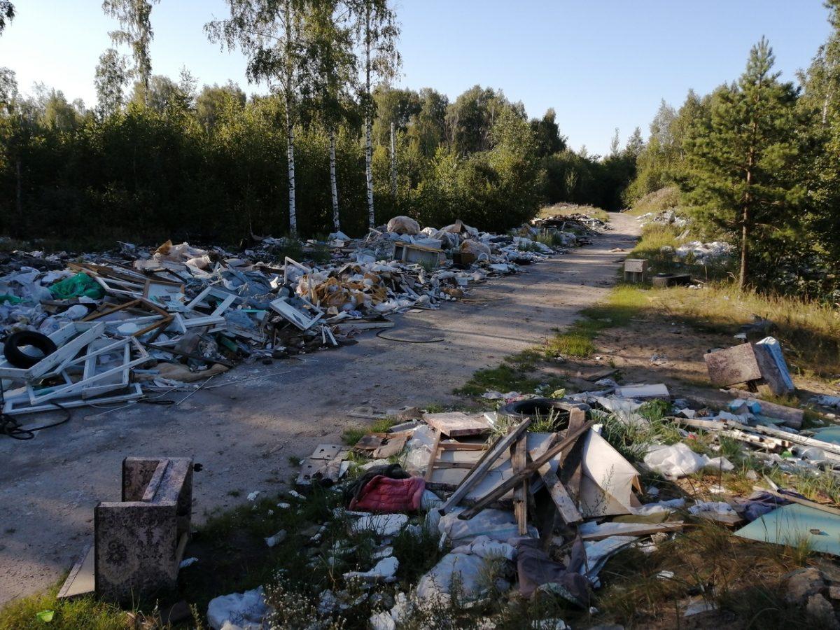 Свалку на выезде из Нижнего Новгорода уберут при наличии финансирования
