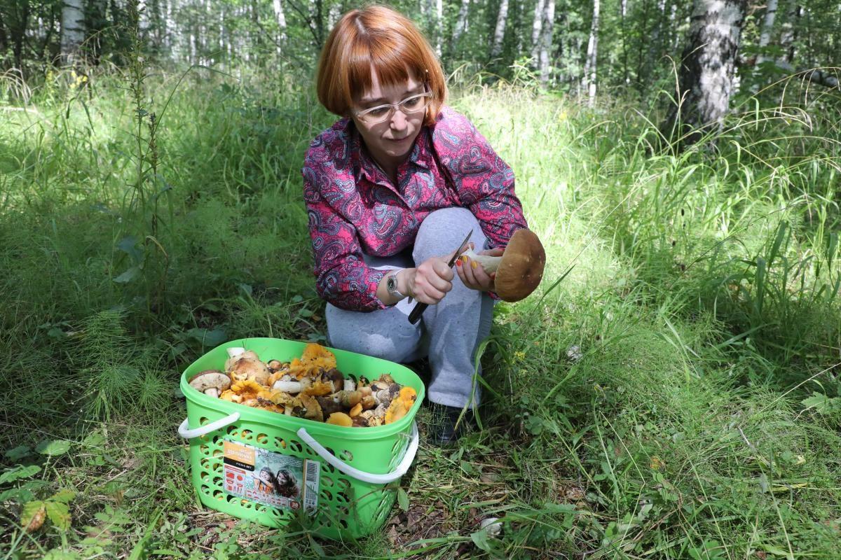 11 человек отравились грибами в Нижегородской области