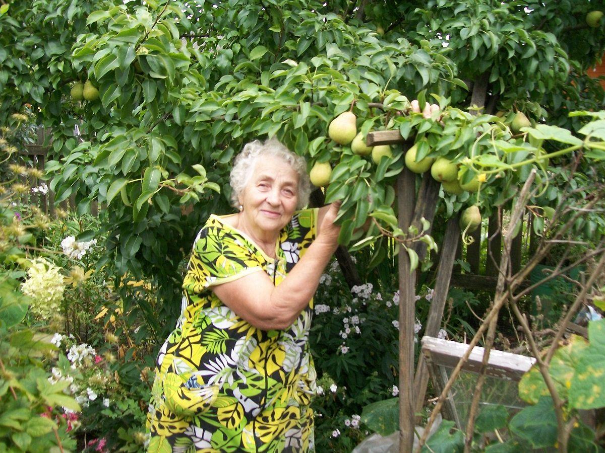 Известный заволжский садовод дала советы по правильному сбору и хранению урожая