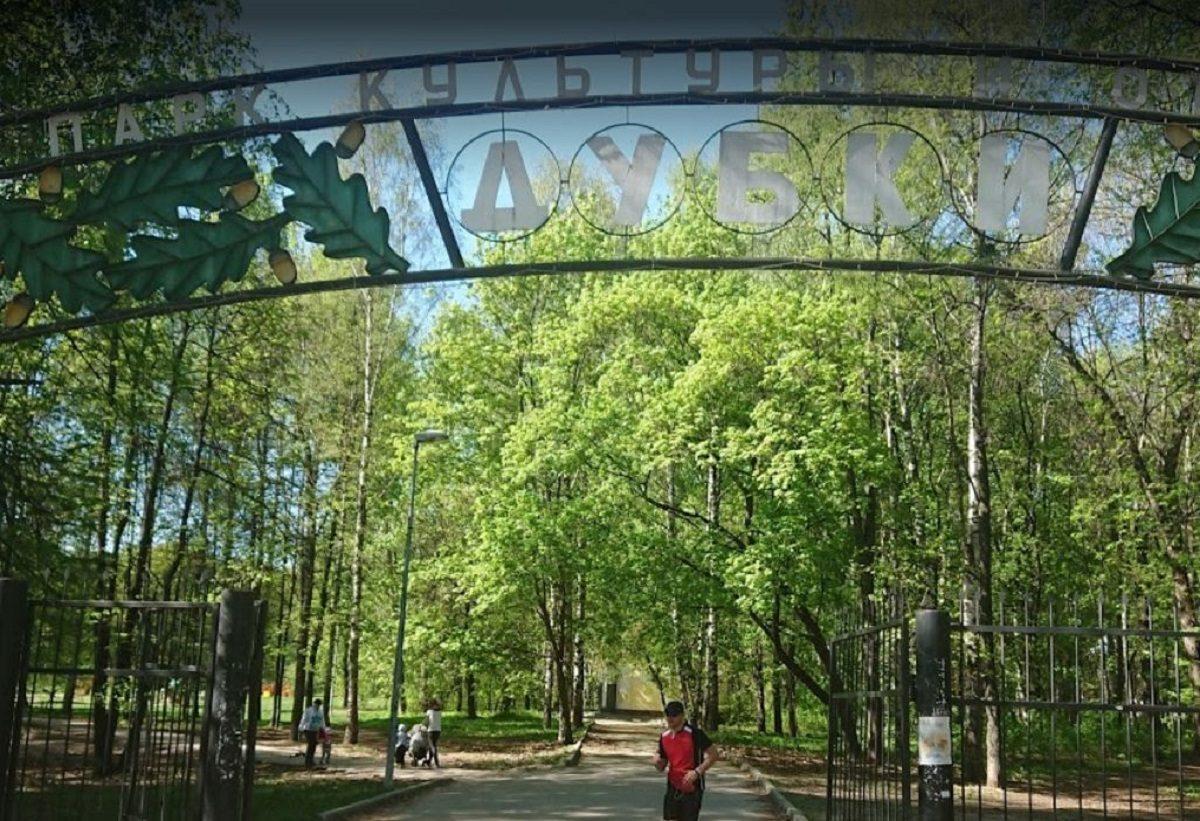 Акция по лечению и росписи деревьев пройдет в сентябре в парке «Дубки»