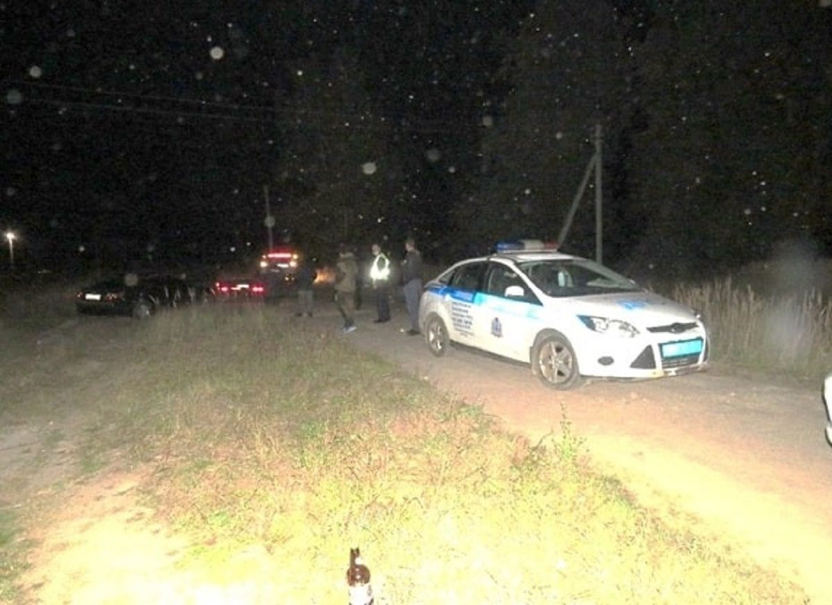 Пьяный водитель избил сотрудника ДПС в Семеновском районе