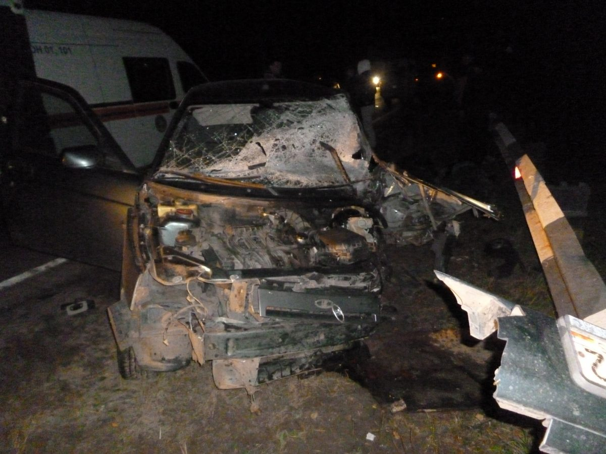 Два человека погибли и один пострадал в пьяном ДТП в Городецком районе