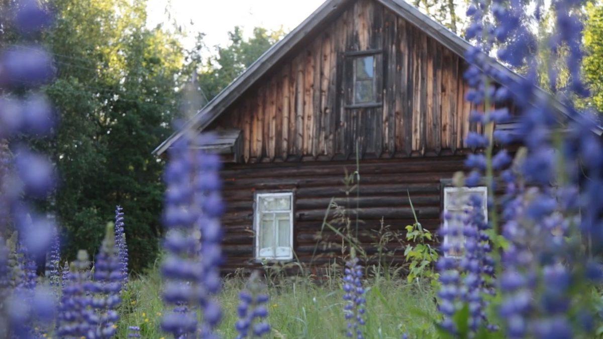 Деревню из фильма «Холоп» могут построить в Нижегородской области