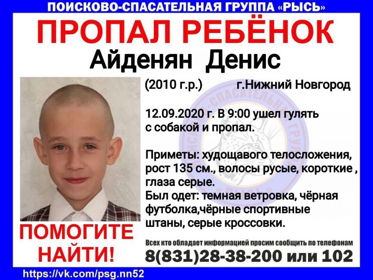 Ушел гулять с собакой: 10-летний мальчик пропал в Нижнем Новгороде