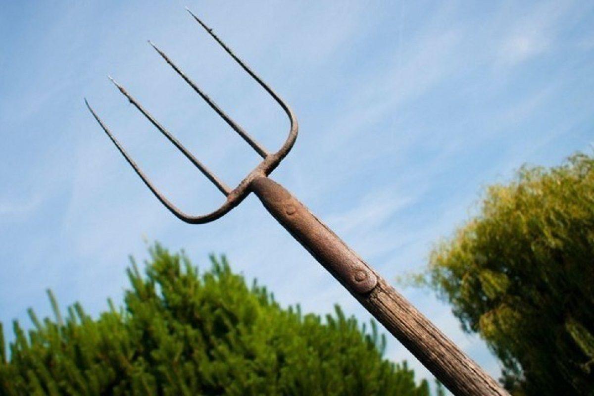 Нижегородец пошёл на соседей с вилами, угрожая убить