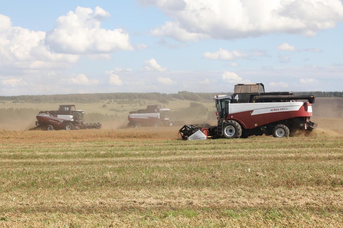 Режим ЧС ввели из-за гибели урожая в Нижегородской области