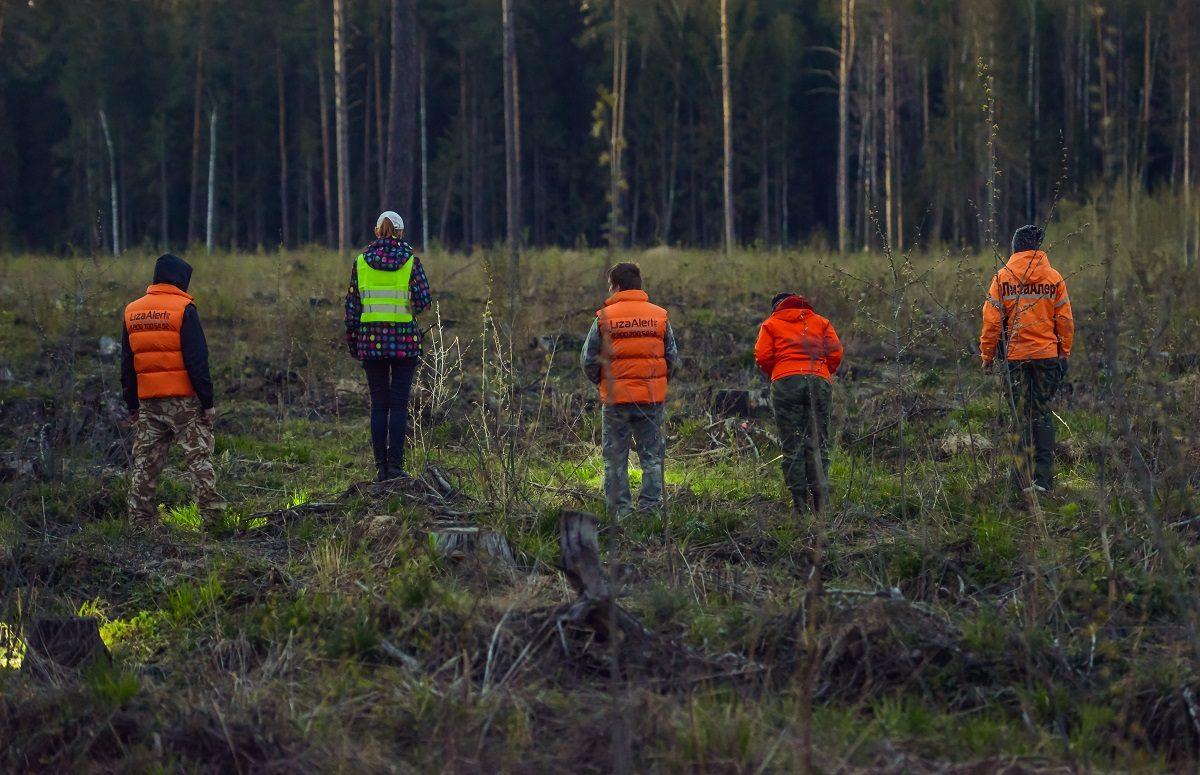 Лес на связи:  как добровольцы поисково-спасательного отряда «ЛизаАлерт» помогают заблудившимся найти путь домой с помощью телефонного звонка