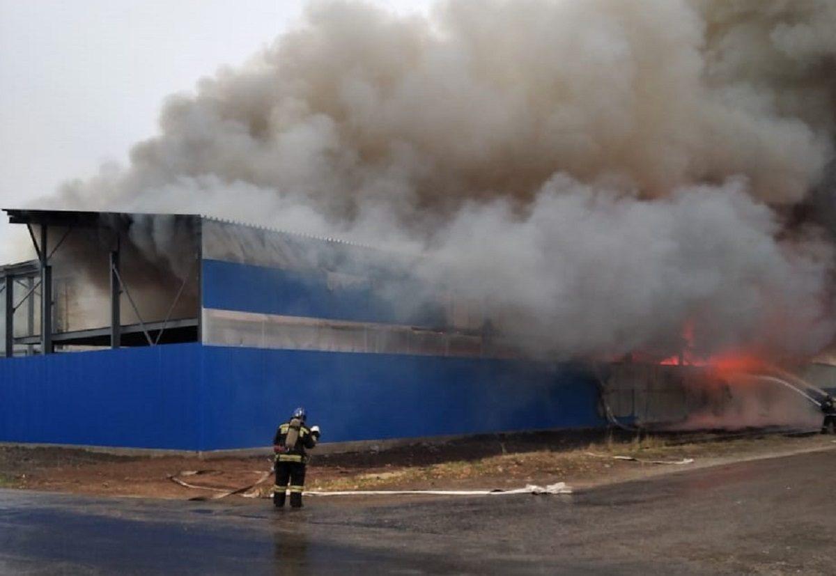 Опубликовано видео пожара на складе в Сормовском районе