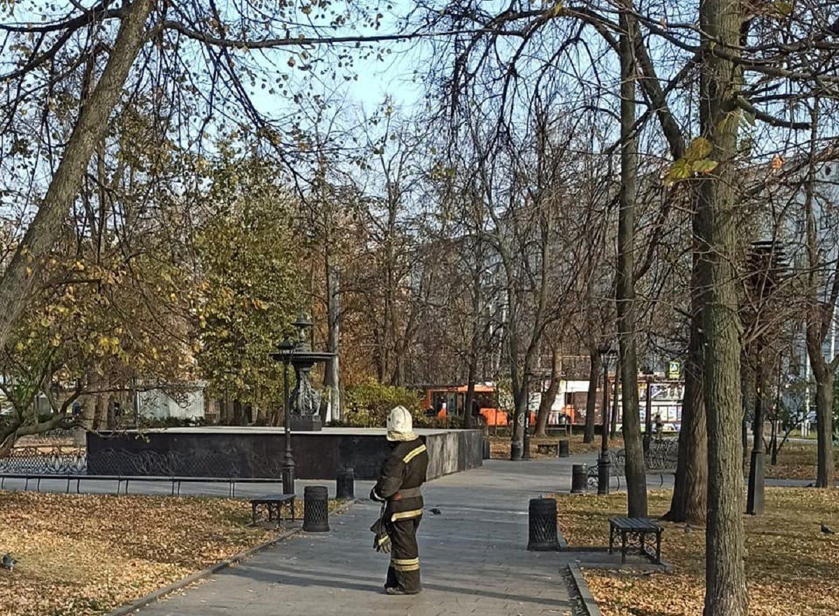Полицейские и спасатели оцепили фонтан на площади Минина и Пожарского