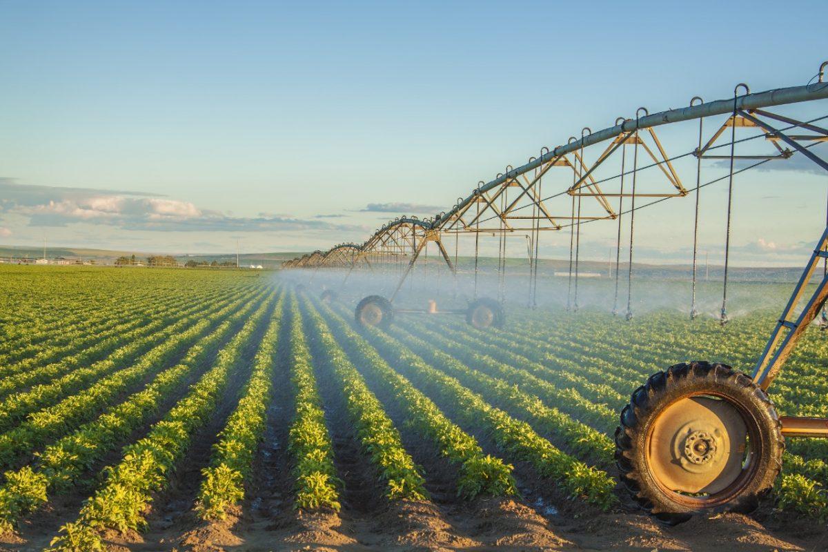 Аграрии региона получили 140 млн рублей субсидий наразвитие мелиорации