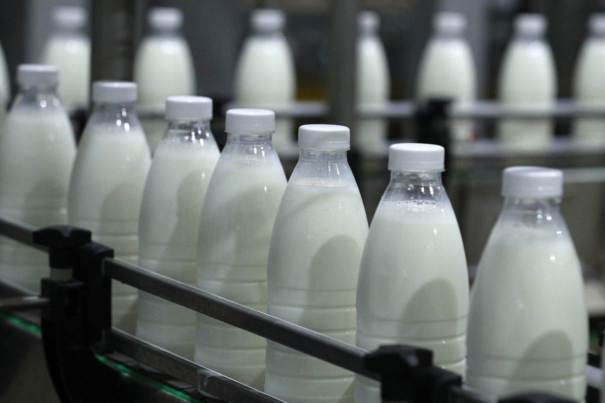 Молоко, овощи или мясо: в нижегородском Роспотребнадзоре рассказали, в каких продуктах чаще находят нарушения