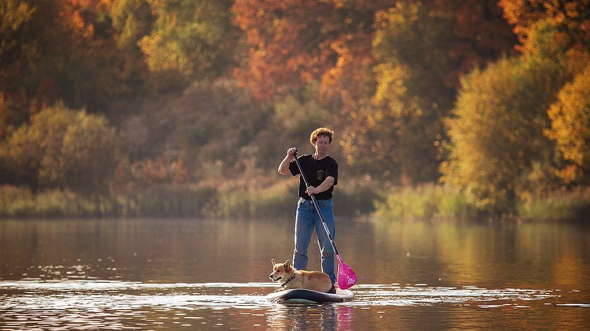 Корги-полицейский показал нижегородцам, как прокатился по озеру на сапе