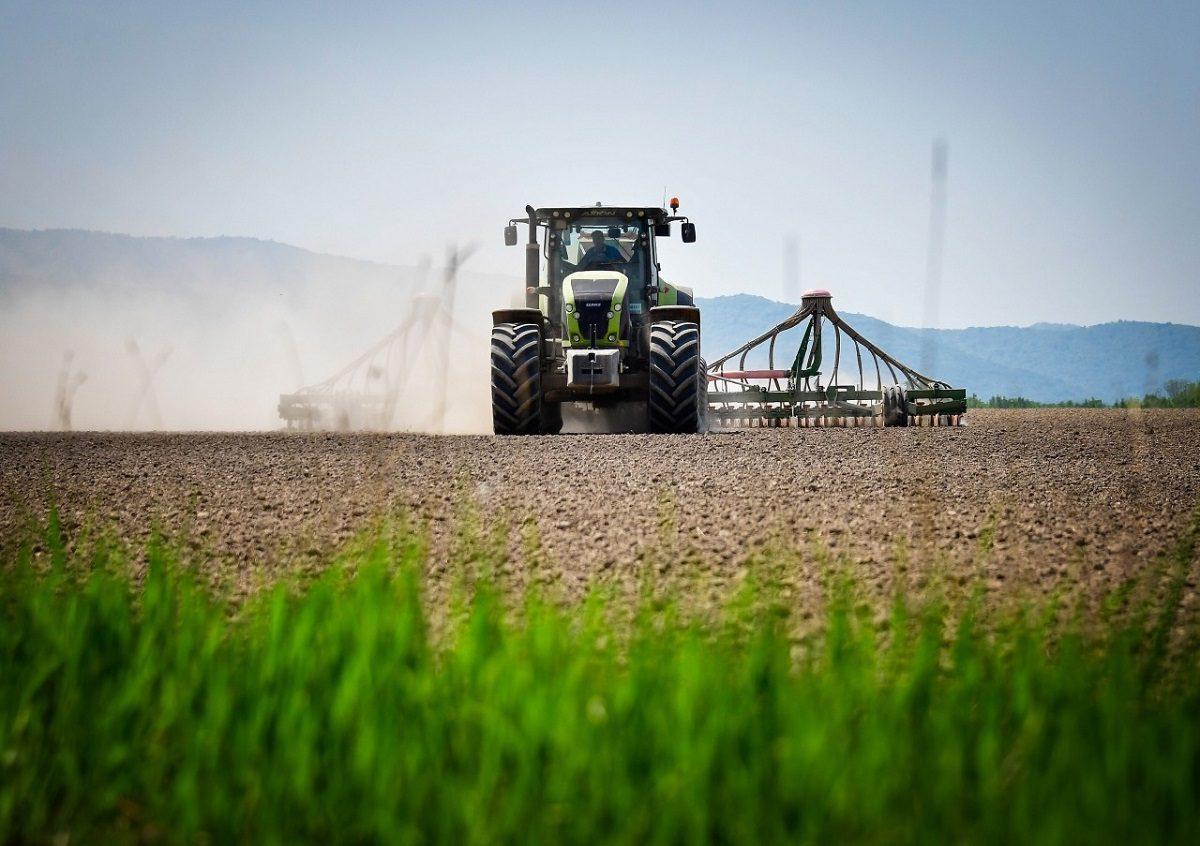 Николай Денисов: «Площадь озимого сева под урожай 2021 года увеличена вНижегородской области»
