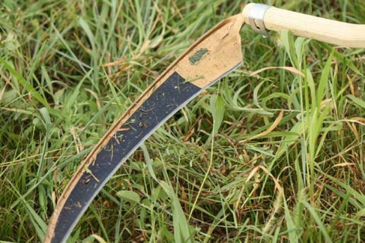 Нижегородец тяжело ранил косой соседку, не договорившись о границах земельного участка