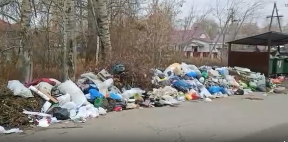Свалку мусора в поселке Стригино вывезли после жалоб местных жителей