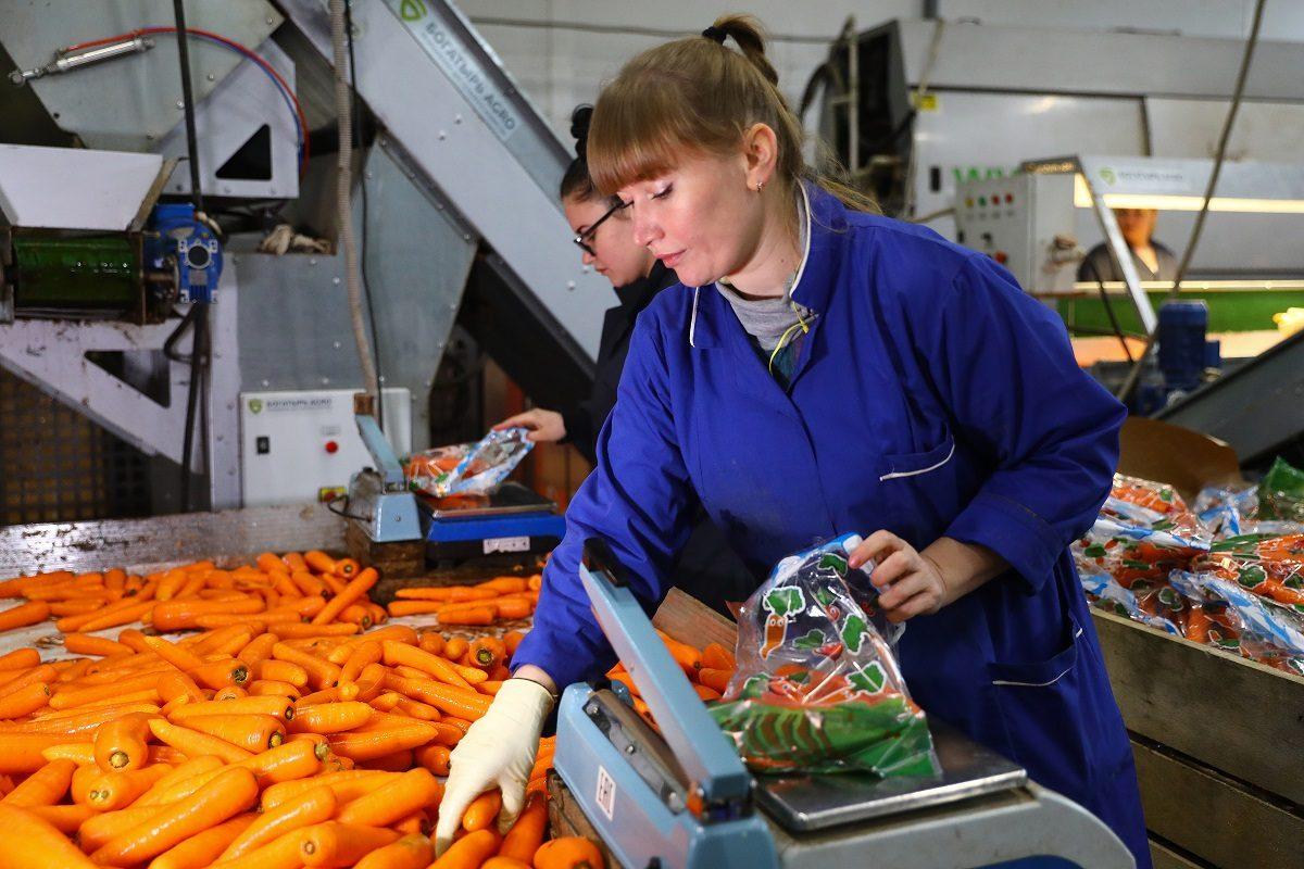 На всё готовое: какой бизнес продают и покупают чаще всего в Нижегородской области