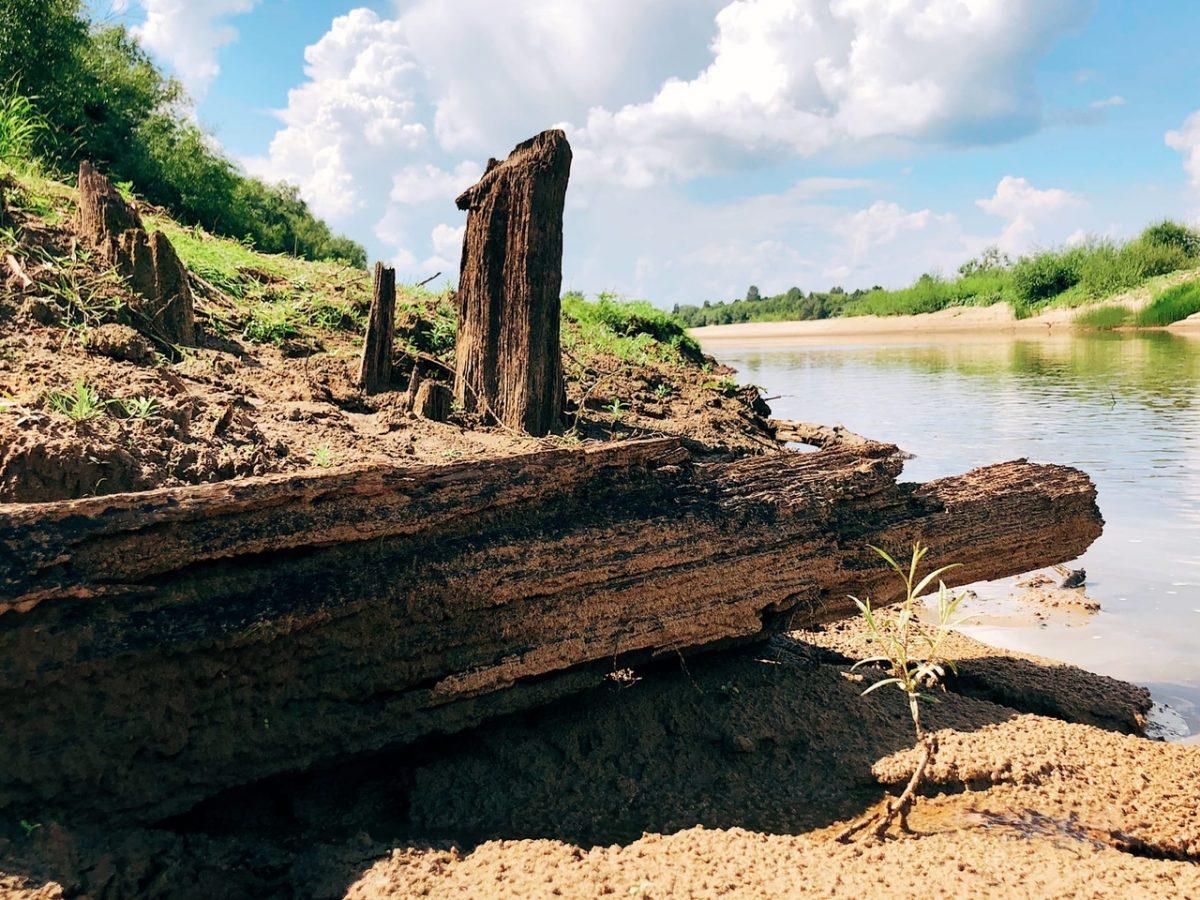 Глеб Никитин: «Уникальное ветлужское судно-беляна может стать музейным экспонатом»