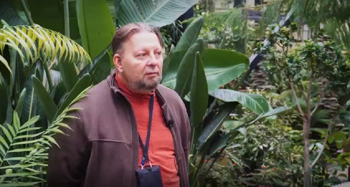 Директор Ботанического сада рассказал о том, как работы в парке «Швейцария» влияют на здоровье деревьев