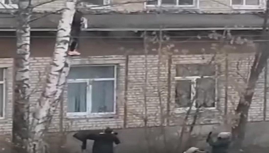 Видео дня: нижегородцы сняли кошку с высокого дерева