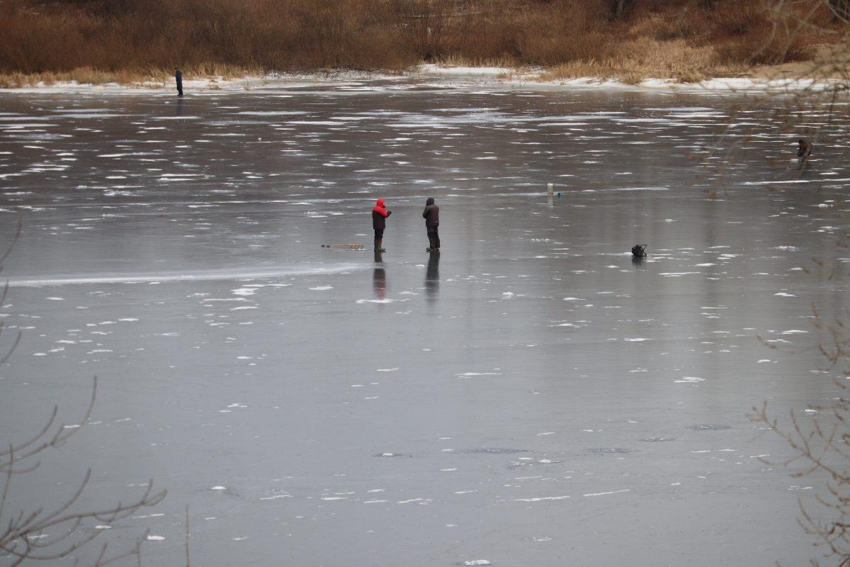 Два человека провалились под лед на снегоходе в Борском районе