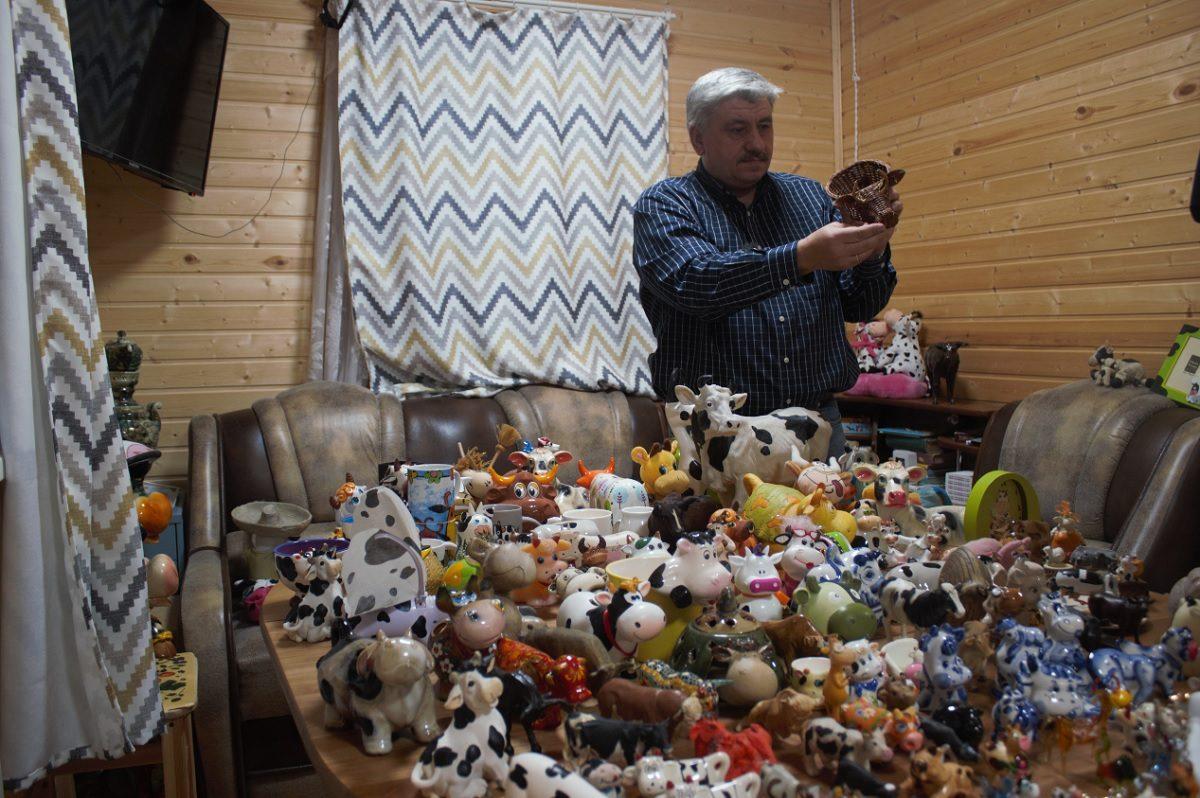 Нижегородский журналист рассказал, почему собирает фигурки коров и быков