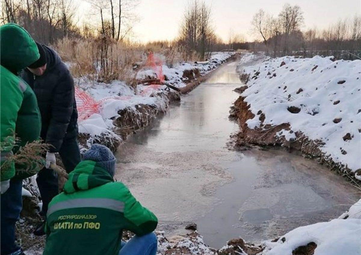 Вывести начистоту: как бдительность нижегородцев помогает бороться с экологическими проблемами региона