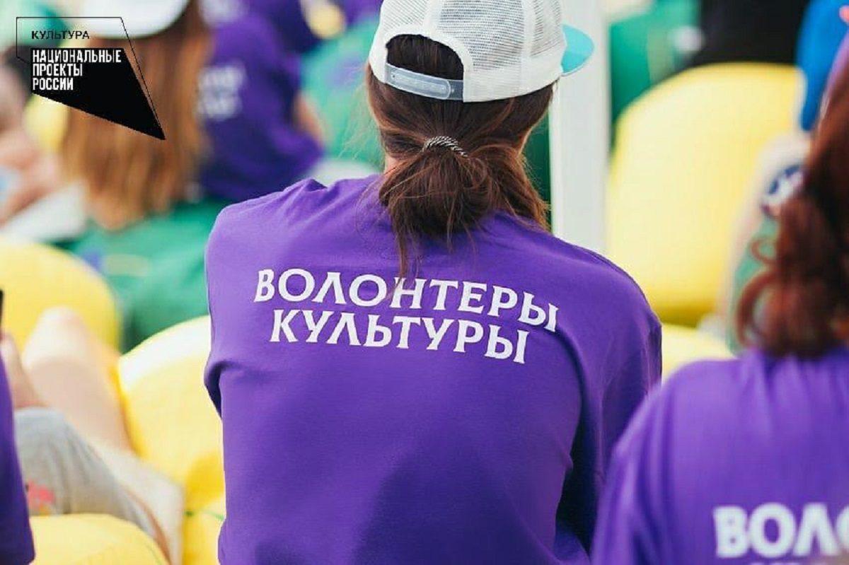 ВНижегородской области открыли 9 волонтерских центров всфере культуры