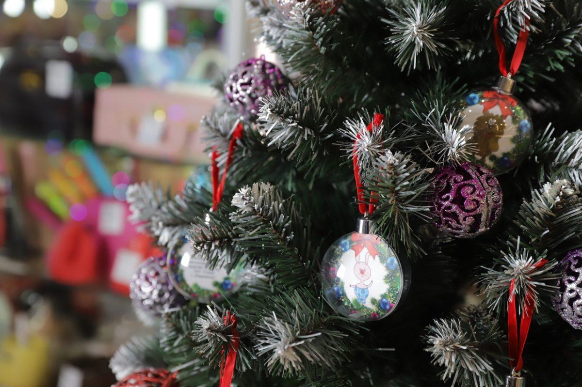 В ТЮЗе пройдут новогодние представления для 800 детей из Нижегородской области