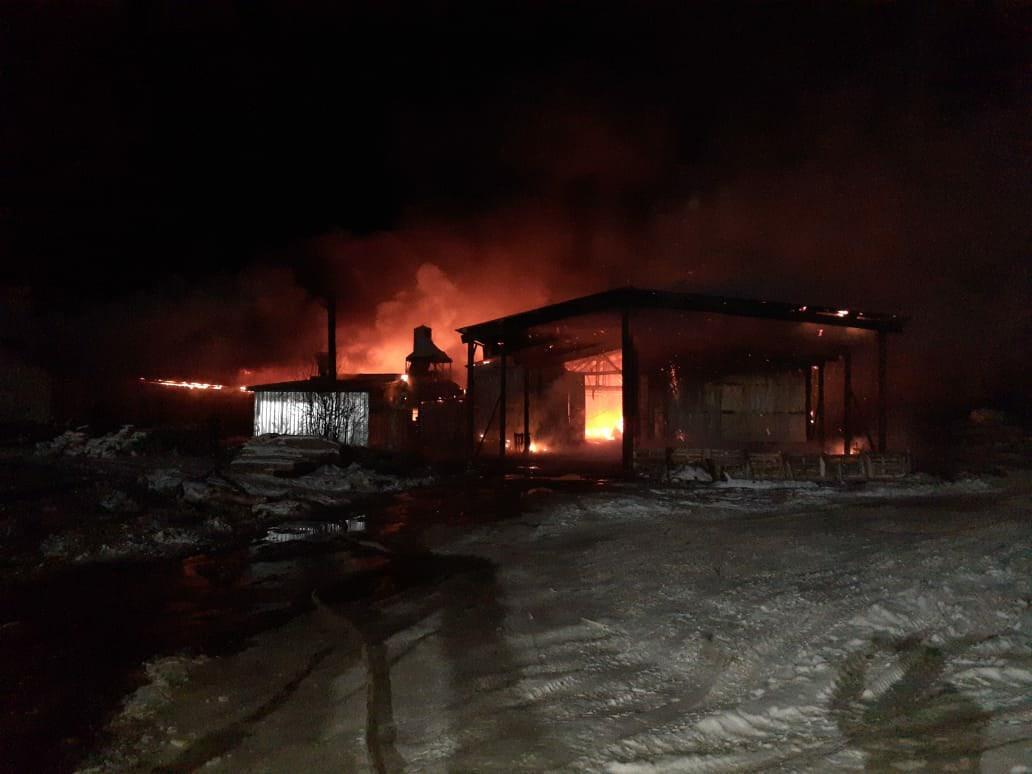 Опубликовано видео с пожара на пилораме в Тонкино