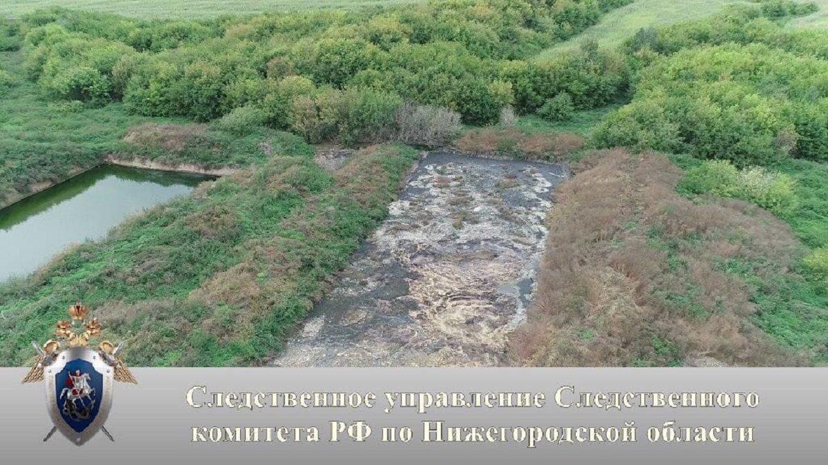Директор «Павловской птицефабрики» выплатит 100 тысяч рублей за смерть пенсионера в яме с жидкими отходами